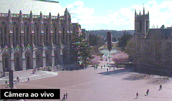 University-of-Washington's-Red-Square