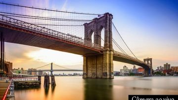 Ponte-do-Brooklyn-ao-vivo-Nova-York